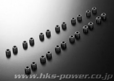 HKS Valve Stem Seals RB26